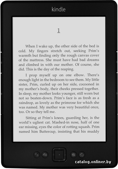 >Amazon Kindle (2012)