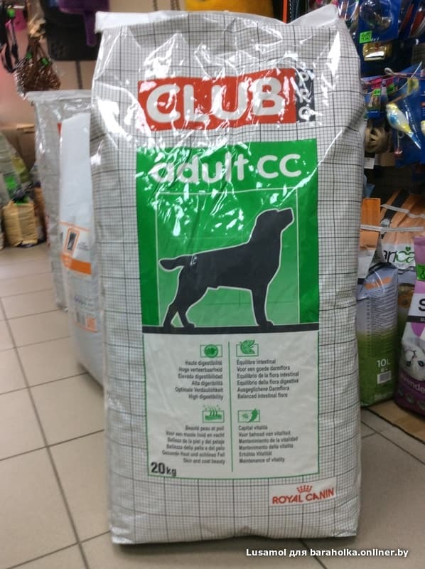Pro club корм royal canin