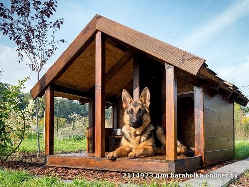 Собачья будка из дерева своими руками
