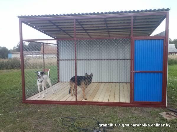 Вольер для собаки своими руками сетка рабица