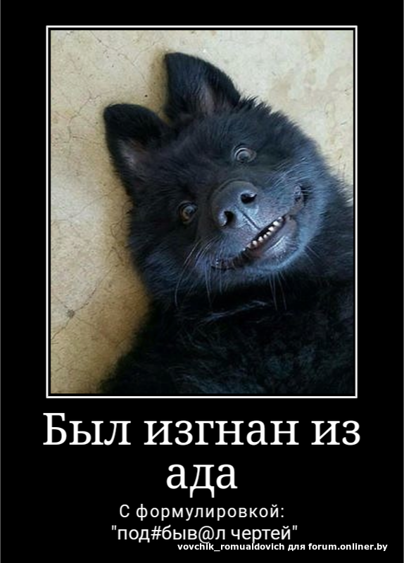 Черти Анекдоты
