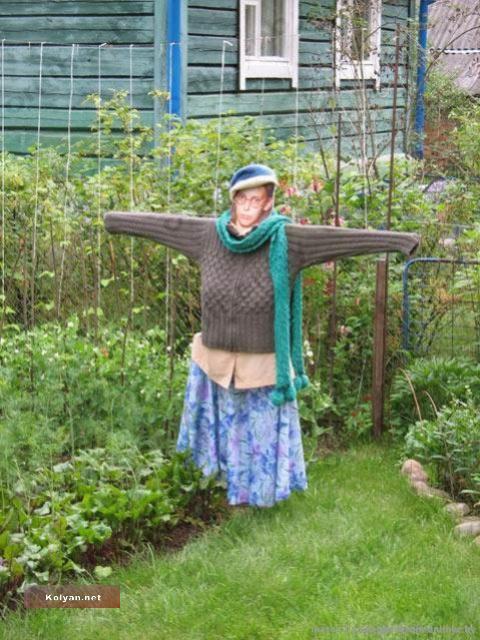 Огород своими руками картинки фото