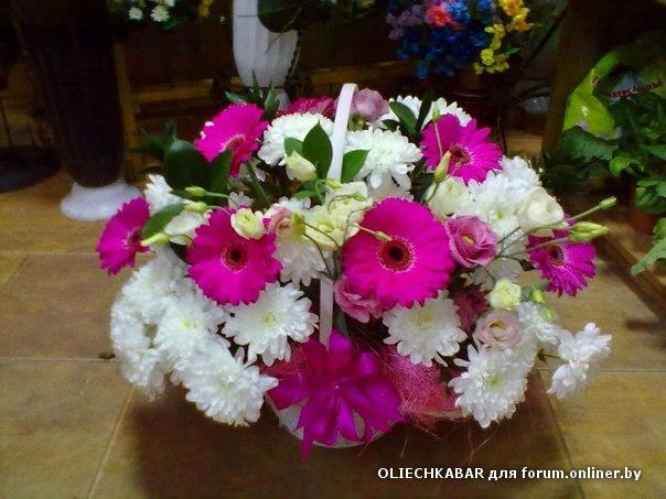 Где купить цветы недорого форум купить декор цветы в киеве