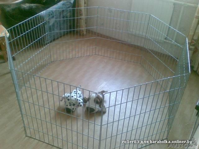 Вольеры для собак своими руками для квартиры