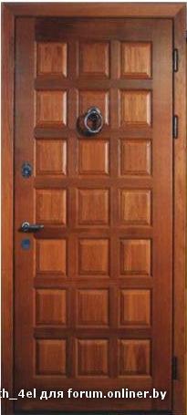 входная дверь 800 205