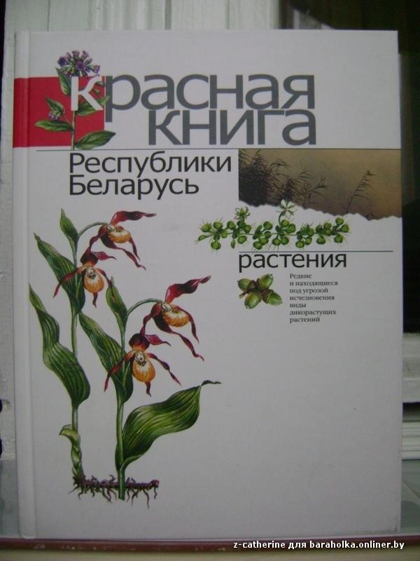 Животные красной книги для детей в картинках 2