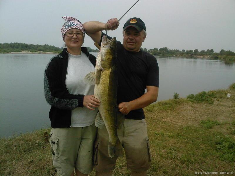 рыбалка на онлайнере