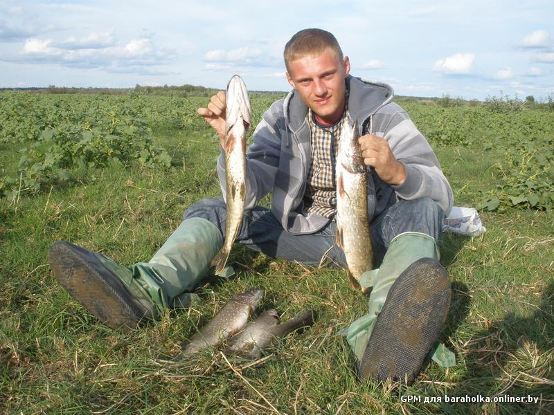 все о рыбалке в гомельской обл