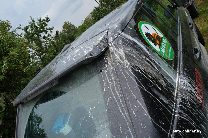 Кто сказал, что птицы предпочитают красные машины? Аисты любит черные Range Rover Sport!