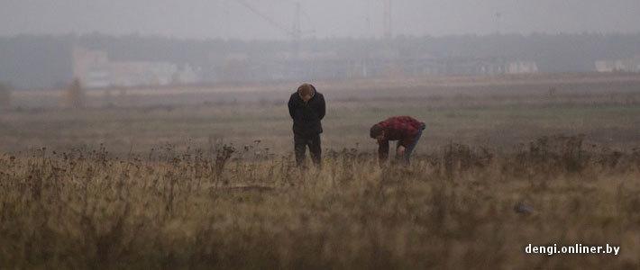 Письмо в редакцию: под Минском молодежь собирает галлюциногенные грибы, зарабатывая по $500 в неделю