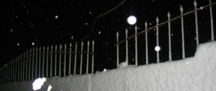 В Гомеле спасатели снимали мужчину, застрявшего на заборе