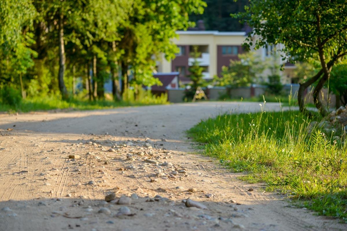 skolko-stoyat-siski-v-belarusi-borovlyani