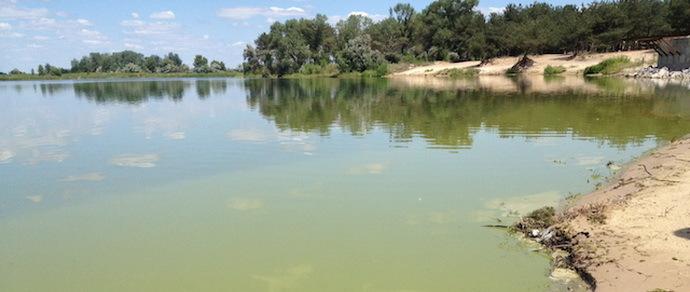 Вилейское водохранилище «зацвело». Минчан беспокоит специфический запах и вкус воды