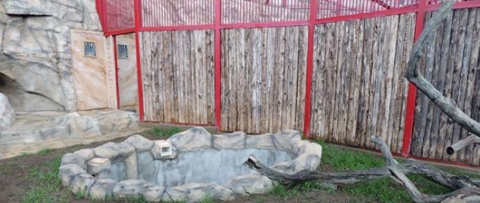 Фотофакт: в минском зоопарке завершается строительство экзотариума