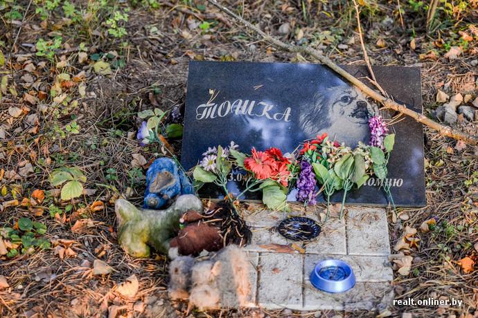 Купить памятник на кладбище с месячными гранитные памятники краснодар цена