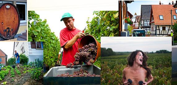 Сны белорусского села: репортаж Onliner.by из французской деревни, которая будто сошла с картинки