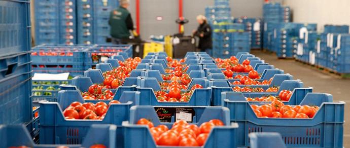Лукашенко о санкциях в отношении белорусских продуктов: «Что это за поведение такое?! Мы же не щенки, чтобы нас за шиворот водить»