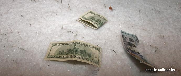 Выпивший вор рассыпал на улице 100-долларовые купюры, а честные белорусы не поверили своему счастью и отнесли деньги в милицию