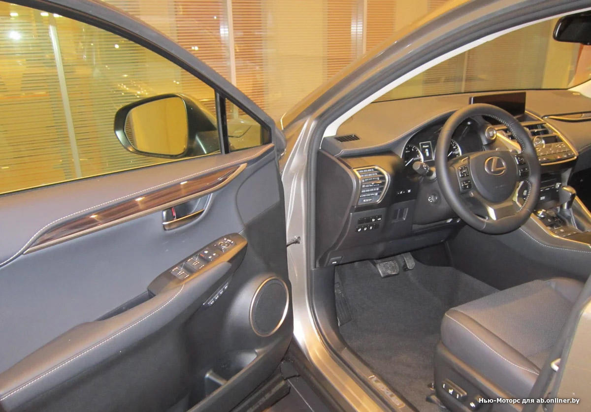 Lexus NX 300 AWD Exclusive 2