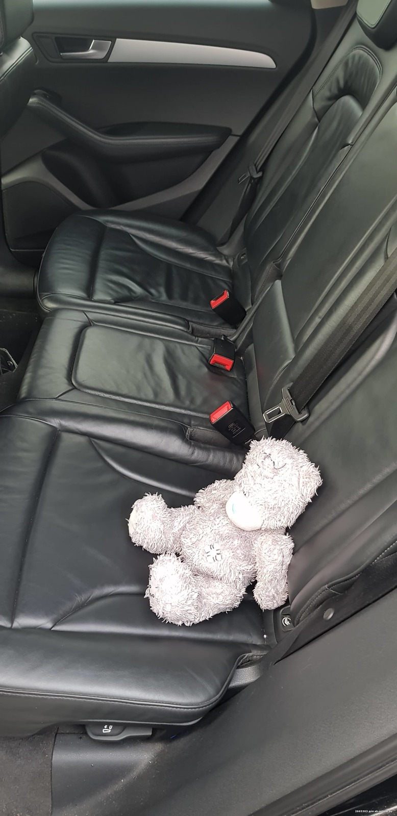 Audi Q5 8RB06Y