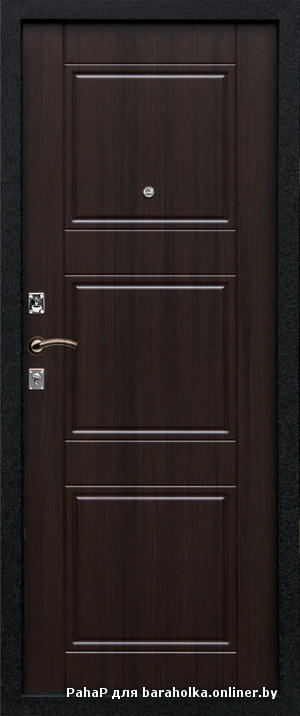металлические двери дёшево быстро