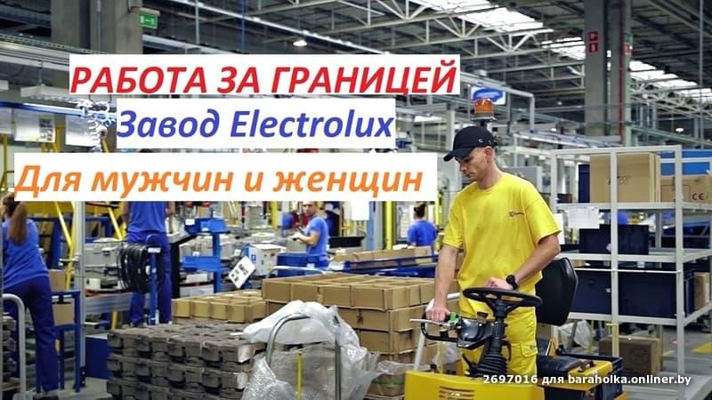 Оператор на конвейере вакансии культуры зеленого конвейера для крс