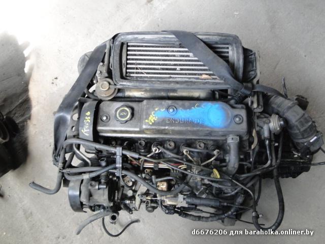 DSC02507.JPG