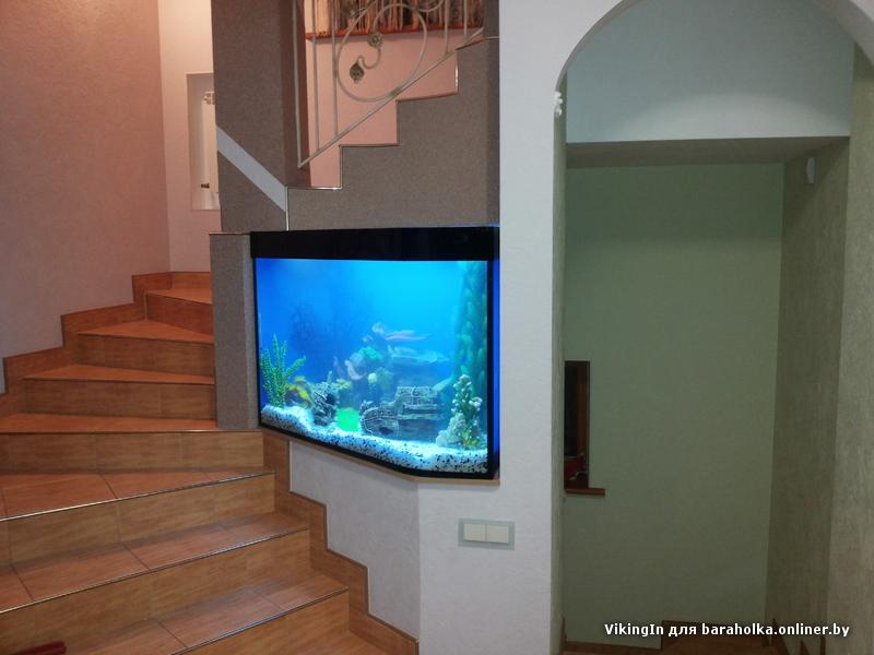 Закащ аквариумов с выгнутым стеклом