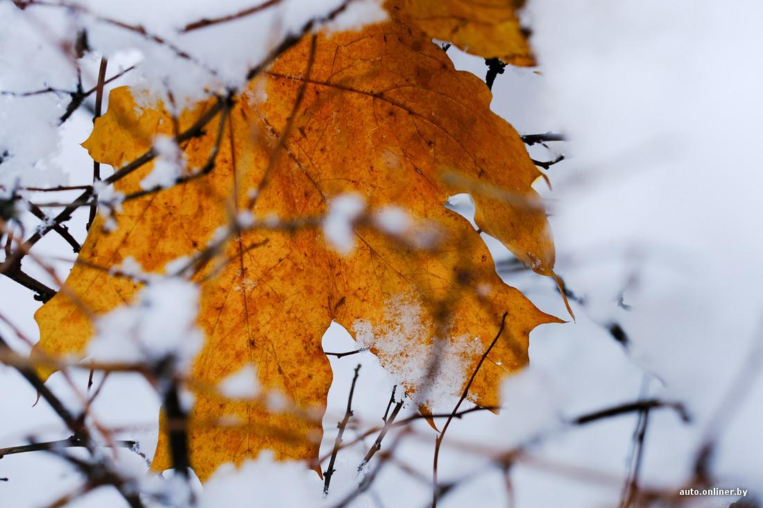 Давление зимой и летом таблица