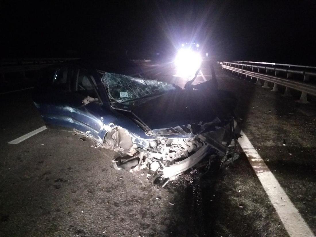 Около полуночи на М1 водитель Passat сбил лося
