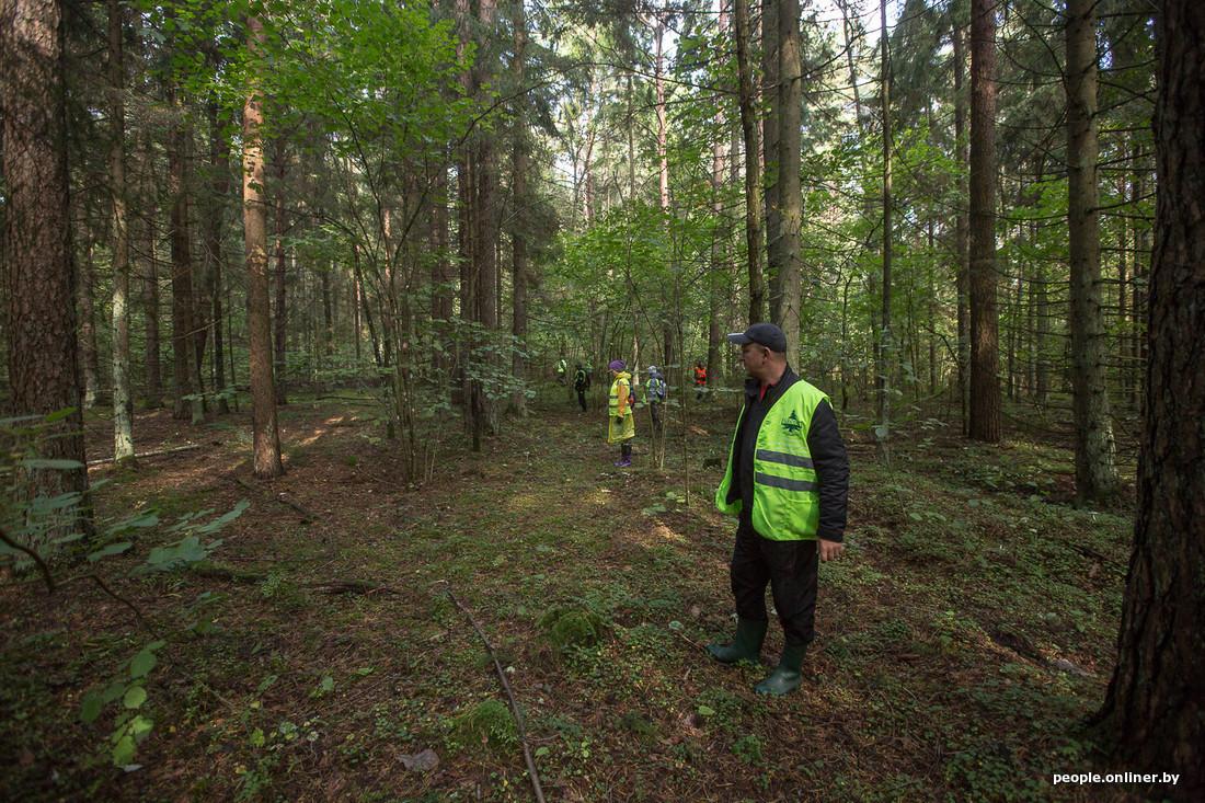 С момента исчезновения школьника в Беловежской пуще прошел ровно месяц. Что известно на данный момент?