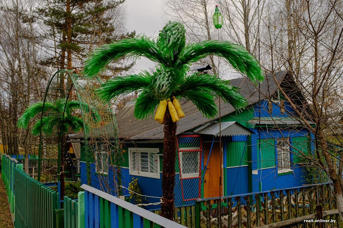Сельчане из Борисовского района рассказали, как бороться с осенней хандрой 3