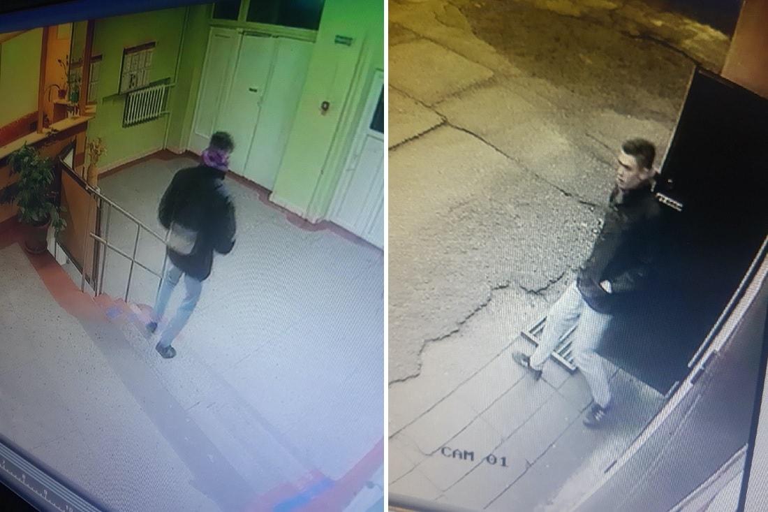 Тело нашли в лесном массиве: в СК рассказали подробности гибели юноши в Ляховичском районе