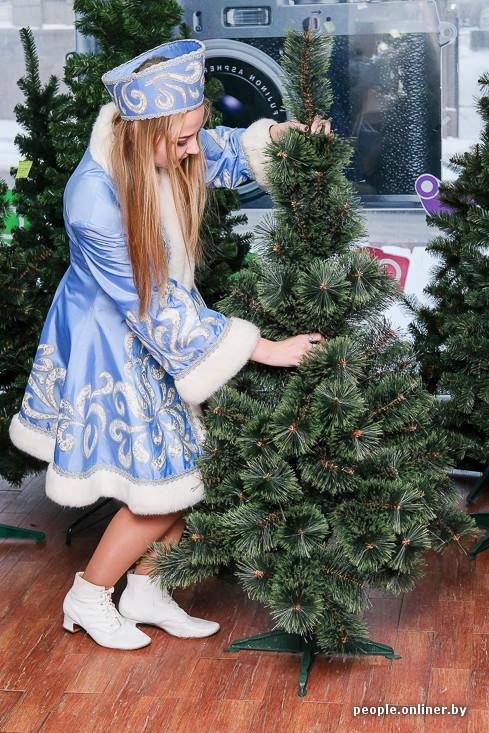 Трах на елке