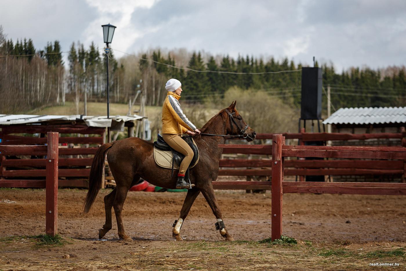 Внучка на конюшне