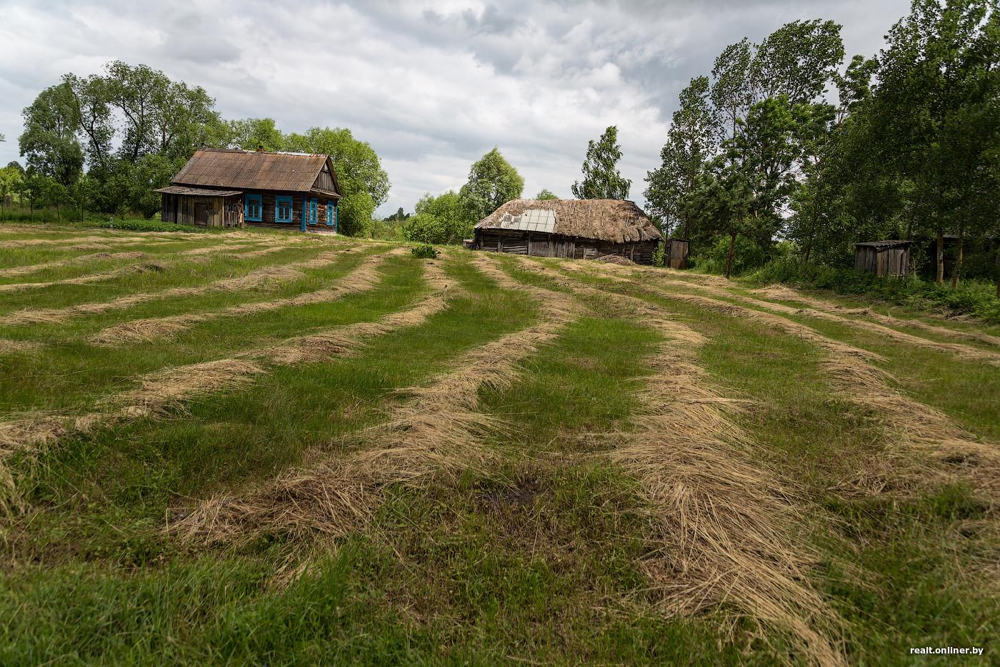 Белорусские деревни фото