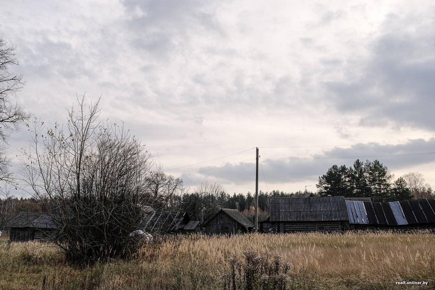 Сельчане из Борисовского района рассказали, как бороться с осенней хандрой 29