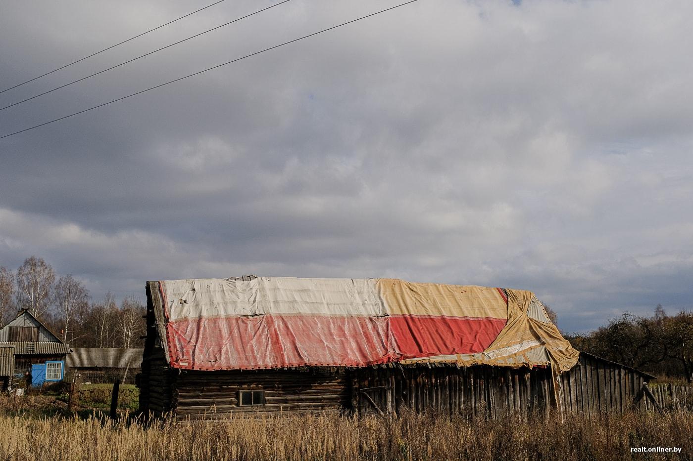 Сельчане из Борисовского района рассказали, как бороться с осенней хандрой 1