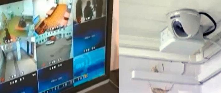 Скрытая камер у гинеколога извращенца