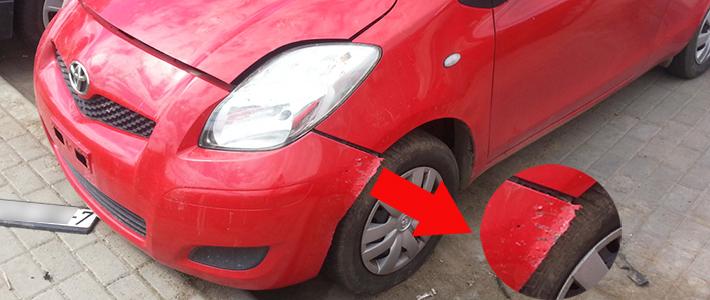 Минчанин: мой припаркованный Toyota покусала собака — ущерб на 1000 долларов