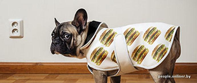 Фотофакт: «МакДональдс» выпустил в продажу первую коллекцию легпрома — термобелье, сапоги, одежда для собак