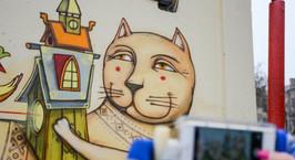 Столичные трансформаторные будки и заборы превратились в кошачье царство. В поисках всех картин с усатыми минчане прошли забавный квест