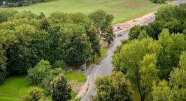 Президент поручил высадить лесополосы вдоль автодорог
