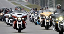 Фоторепортаж: любители Harley-Davidson собрались в Липках, чтобы пообщаться и подготовиться к новому сезону