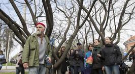 Фотофакт: городские активисты прошли 12 километров, показав самые древние и красивые деревья Минска