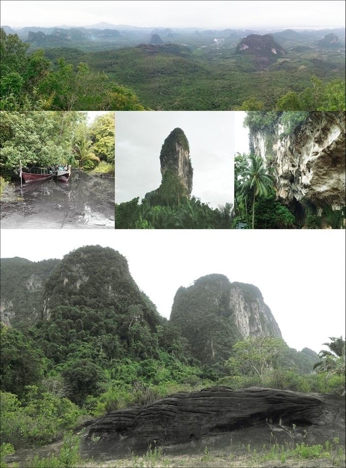 Отель-гнездо: в Таиланде предложили построить гостиницу для птиц и людей 0b6759e865ea6b2b28a876b5cfa118e4