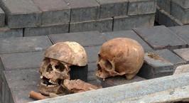 Фотофакт: во время реконструкции Молодежного театра в Минске обнаружены черепа