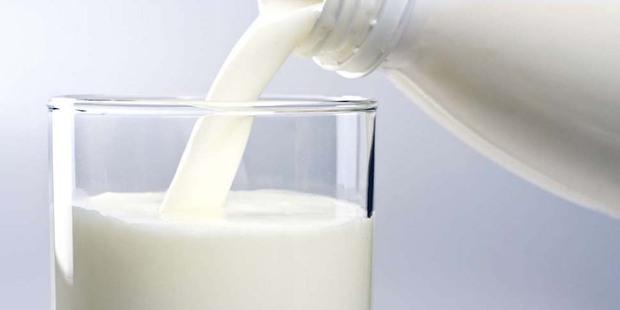 Россельхознадзор заявил о фальсификациях молочки ОАО «Савушкин продукт» и ограничил поставки еще двух белорусских заводов