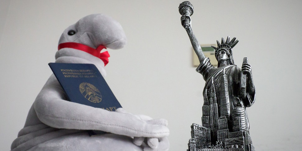 Что надо знать про путешествия с биометрическим паспортом