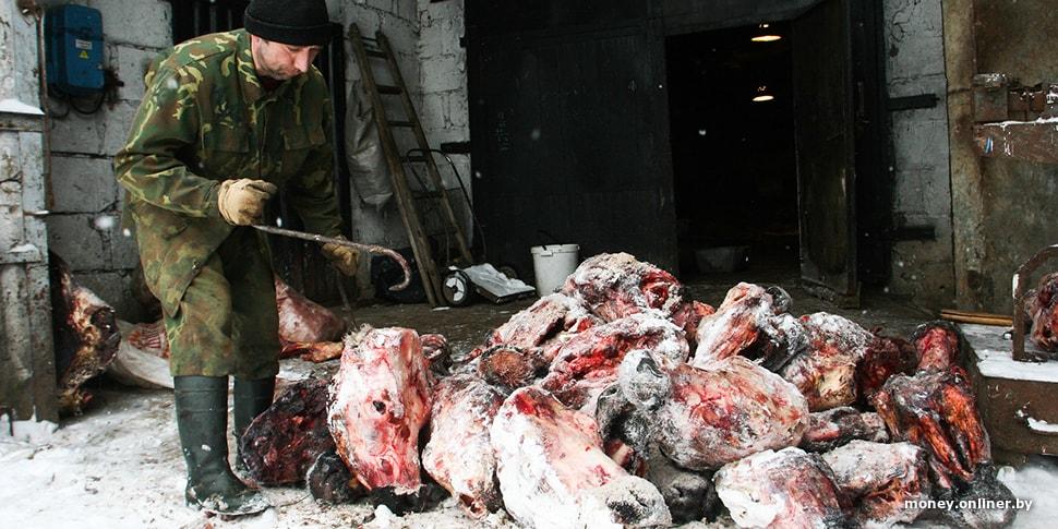 В Беларуси обнаружили незаконный экспорт мяса. С поличным задержаны директора мясокомбинатов